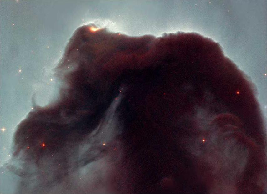 Rising from a sea of dust and gas like a giant seahorse, the Horsehead nebula is one of the most photographed objects in the sky. NASA Hubble Space Telescope took a close-up look at this heavenly icon, revealing the cloud intricate structure.