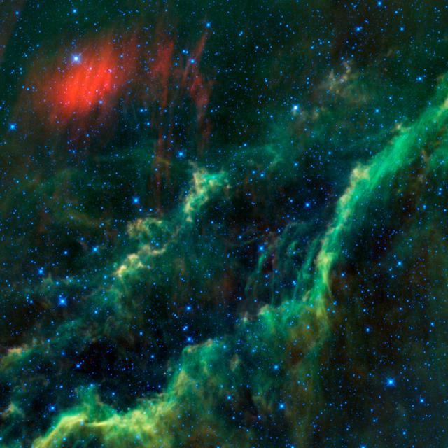 This infrared image from NASA Wide-field Infrared Survey Explorer features one of the bright stars in the constellation Perseus, named Menkhib, along with a large star forming cloud commonly called the California Nebula.