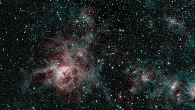 This image from NASA's Spitzer Space Telescope shows the Tarantula Nebula in two wavelengths of infrared light, each represented by a different color. The red color at the heart of the nebula shows the presence of particularly hot gas emitting infrared light at a wavelength of 4.5 micrometers. The blue regions are dust composed of molecules called polycyclic aromatic hydrocarbons (PAHs), which are also found in ash from coal, wood and oil fires on Earth. Regions emitting both wavelengths appear white.  https://photojournal.jpl.nasa.gov/catalog/PIA23646