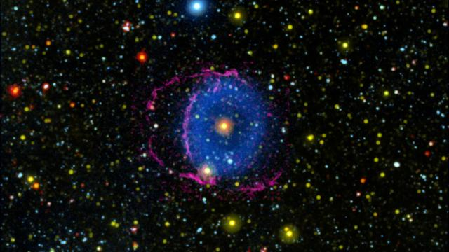 The Blue Ring Nebula was discovered in 2004 by NASA's Galaxy Evolution Explorer (GALEX) mission. Astronomers think the nebula was created by the merger of two stars, and that we are seeing the system a few thousand years after the merger, when evidence of the collision is still apparent.  The blue light in the image shows the debris cloud created by the merger. As the hot cloud of material expanded into space and cooled down, it formed hydrogen molecules that collided with the interstellar medium (the particles occupying the space between stars). These collisions caused the hydrogen molecules to radiate far-ultraviolet light, which was detected by GALEX. Yellow indicates near-ultraviolet light, also detected by GALEX, which is emitted by the star at the center of the nebula and many surrounding stars.  Infrared light observed by NASA's Wide-field Infrared Survey Explorer (WISE) is also shown in red, and is primarily emitted by the central star. Detailed analysis of the WISE data revealed a ring of debris around the star – further evidence of a merger.  Magenta indicates optical light — light visible to the human eye — collected using the Hale Telescope. This light comes from the shockwave at the front of the expanding debris cones. The optical light helped astronomers discover that the nebula actually consists of two cones moving away from the central star. The base of one cone is moving almost directly toward Earth, while the other is moving almost directly away, and the magenta light outlines the two bases. The blue region in the image shows where the cones overlap; the non-overlapping regions are too faint for GALEX to see. Figure A shows the orientation of the cones to Earth and the way they appear to overlap.  https://photojournal.jpl.nasa.gov/catalog/PIA23867
